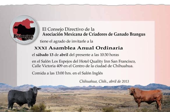 Invita Asamblea 2013