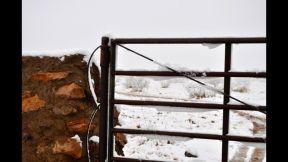 nevada buenaventura marzo 8 - 2