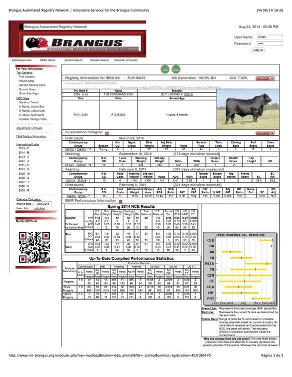 CORONADO 535X R10180470