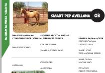 Avellana, hija de Smart Pep Tomas