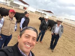 En el centro e genetica ganadera la Campana viendo los toretes del Tarahumar