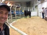 Abriendo la subasta con una bonita vaquilla del rancho el tarahumar