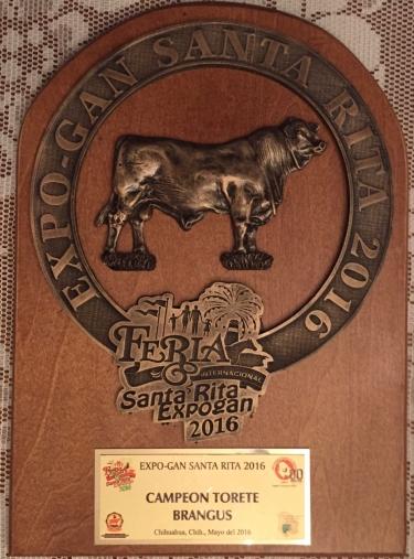 campeon torete RTH 440-4 el tarahumar