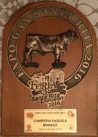 Campeona vaquilla bragus 2016 RTH Miss 1508-5