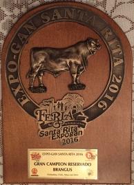 Gran Campeon Reservado de la Raza Brangus RTH 440-4 el tarahumar