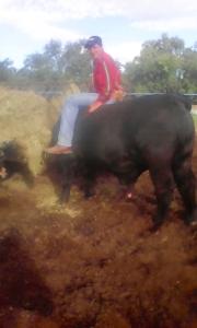 arturo echando pastura con el 551