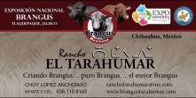 lona tarahumar expo jalisco 2017
